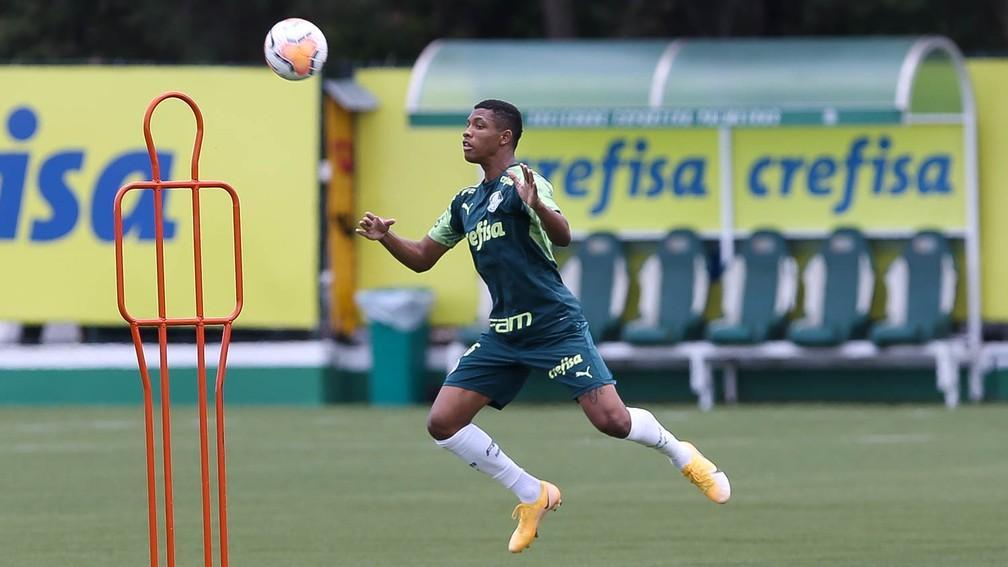 Palmeiras pode ter mais de dez retornos para início das oitavas de final da Libertadores